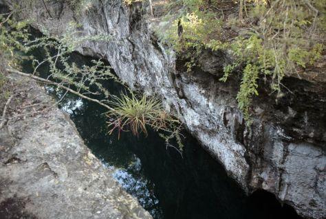 Cenote Laguna Clara